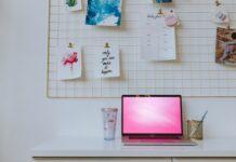 sklep internetowy, ecommerce, e-commerce, sklep interetowy w domu, praca w domu, dropshipping